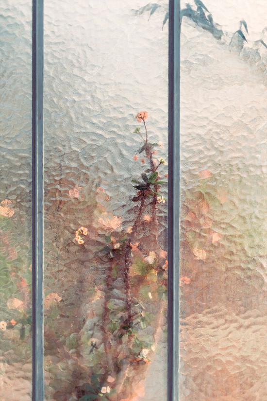 geneva-botanical-garden-03
