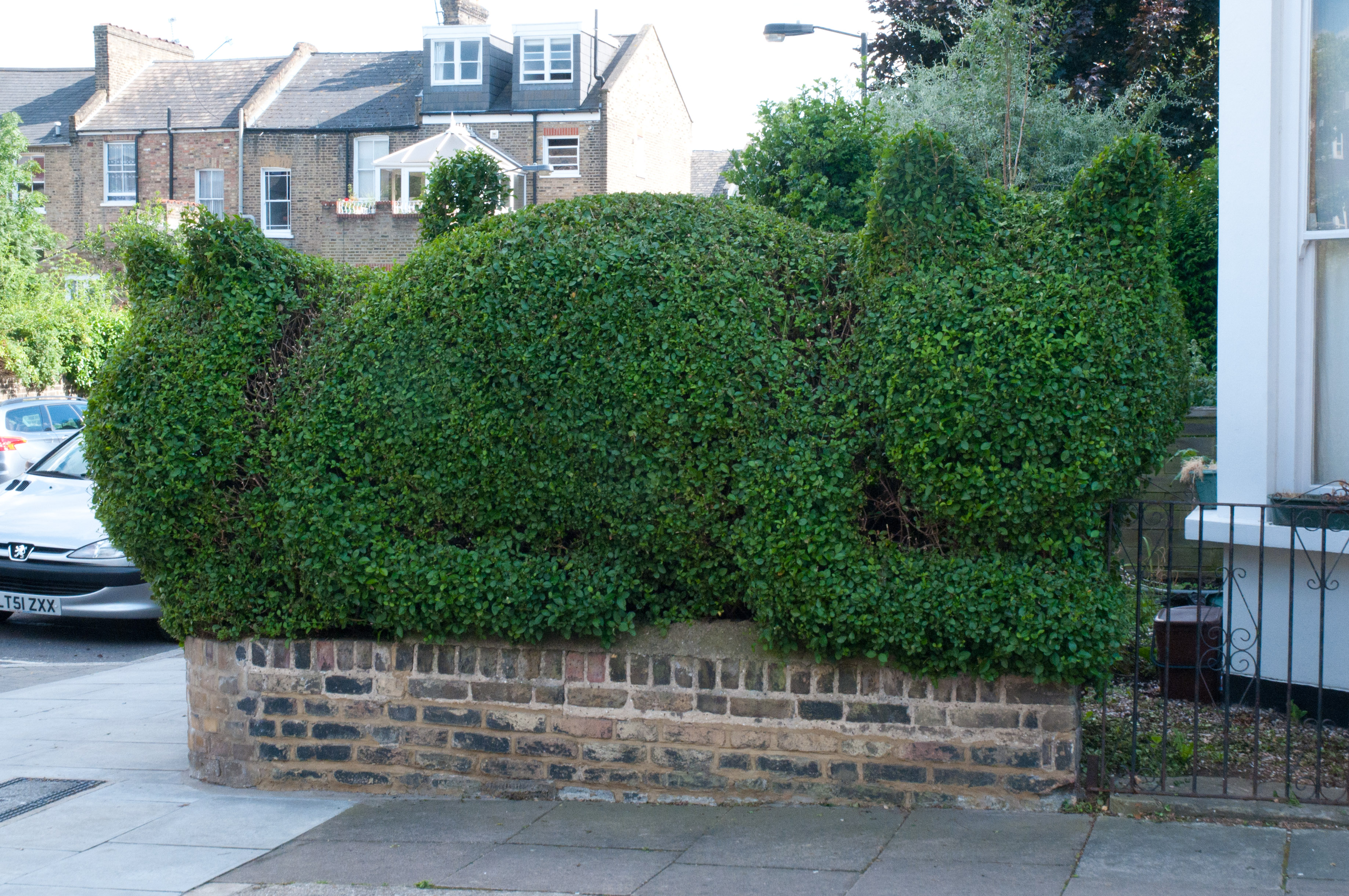 topiary-cat-created-by-tim-bushe1
