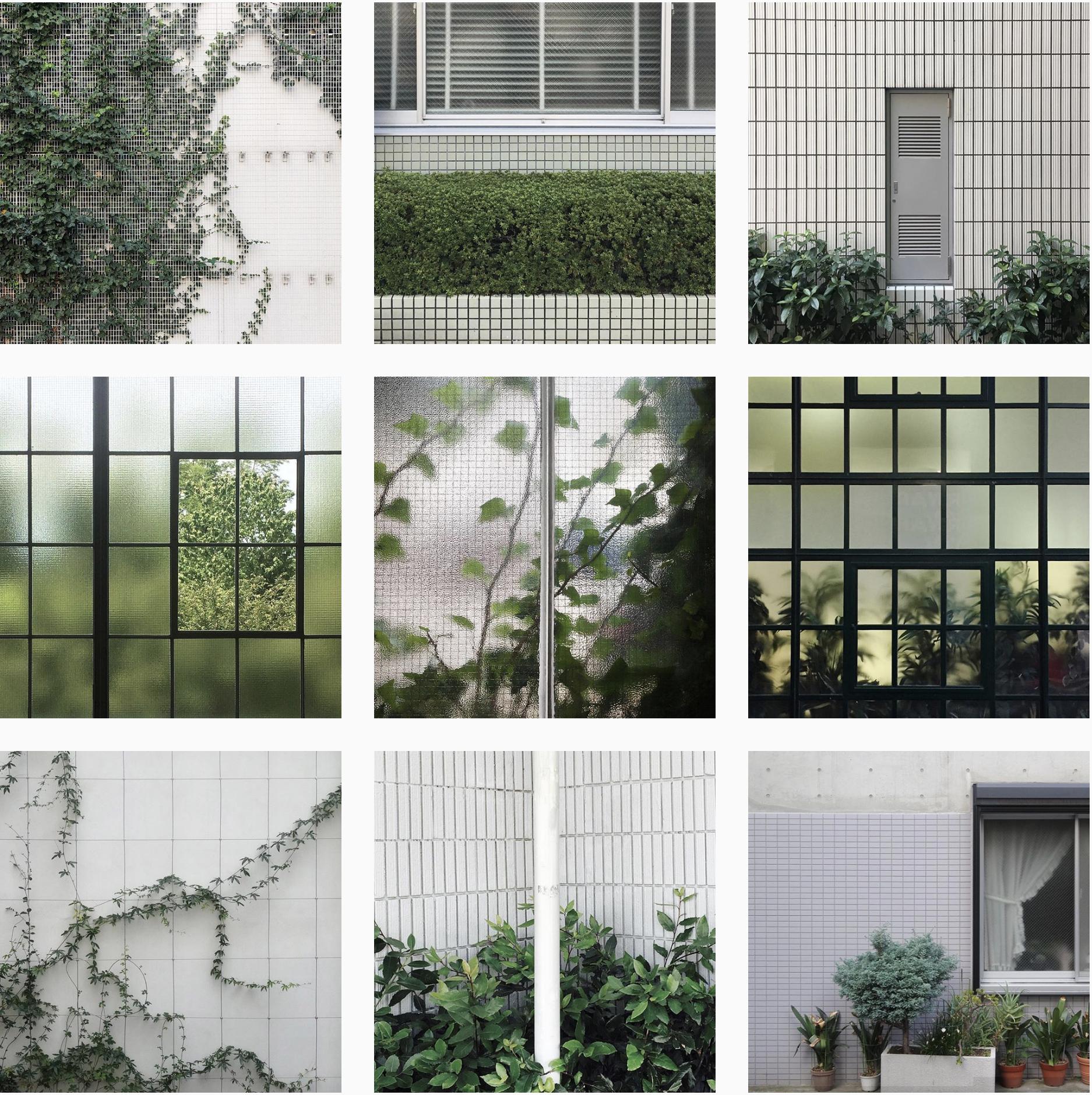 plantsgrids3